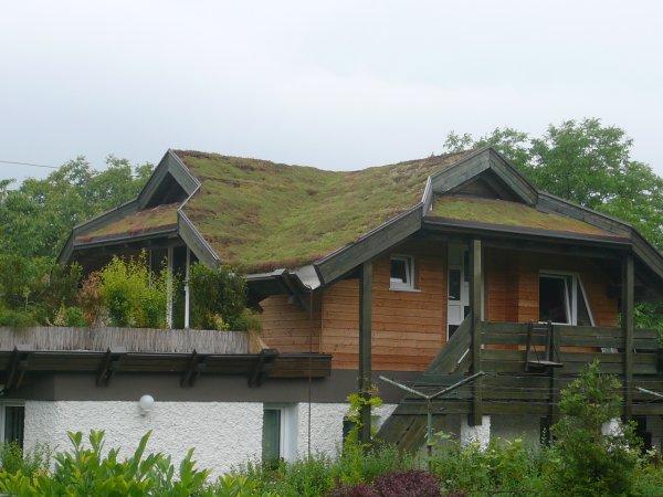Poševna streha Braslovče