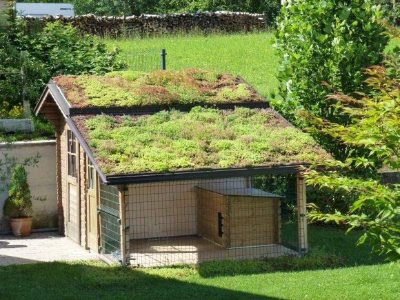 Gradnja zelene strehe